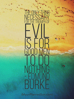 The only thing necessary for the triumph of evil is for good men to do nothing. - Edmund Burke